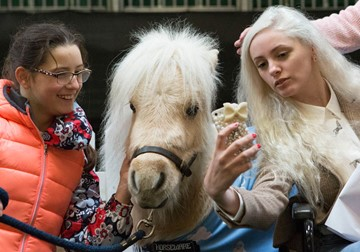 Teddy the Shetland meets fans at Your Horse Live
