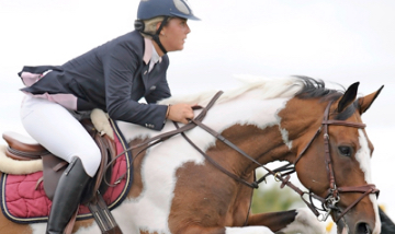 Your Horse Live training masterclasses on Friday 8th November